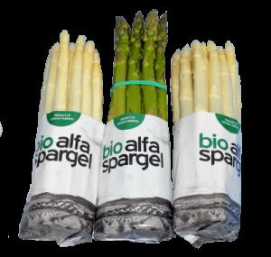 alfa asparagus